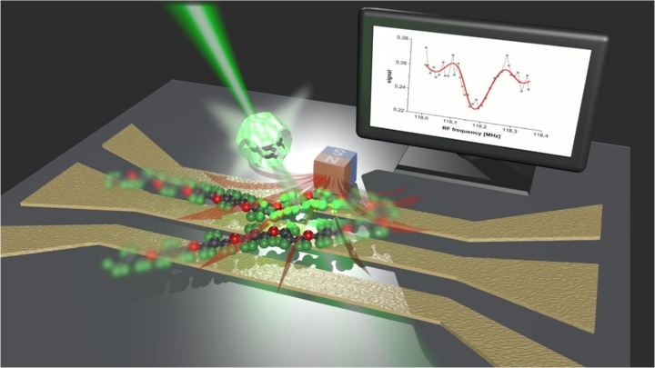 Single molecule spectroscopy (c)