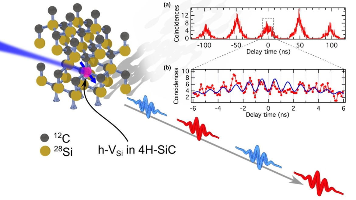Spin-controlled generation of indistinguishable and distinguishable photons from silicon vacancy centres in silicon carbide