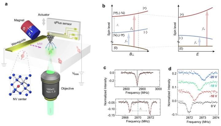 Bild: Nanoscale electric-field imaging based on a quantum sensor and its charge-state control under ambient condition