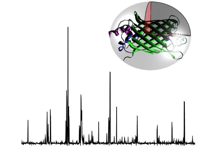 Single-Molecule Fluorescence Biophysics (c)